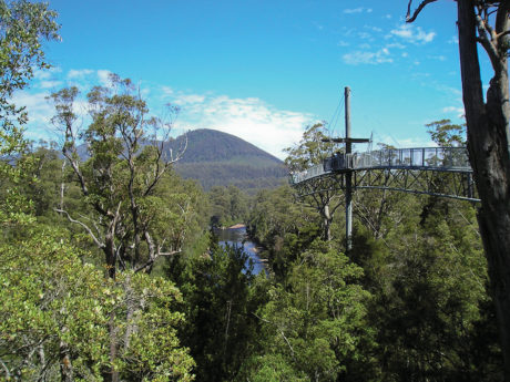 Experience-Tasmania-Huon-Valley-&-Tahune-Forest-Airwalk